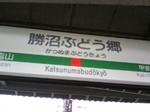 2009ぶどう祭り.jpg
