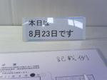 8.23期日前投票.jpg